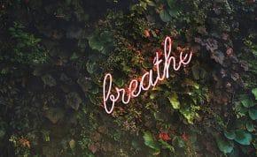 Back to Basics Mindfulness