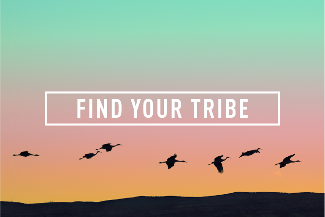 FIND YOUR TRIBE </BR> Monthly Event : Wed 29th NOV