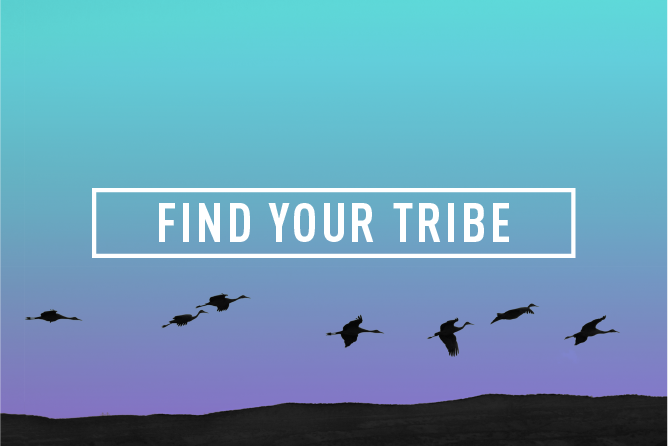 FIND YOUR TRIBE </BR> Monthly Event : Wed 31st Jan