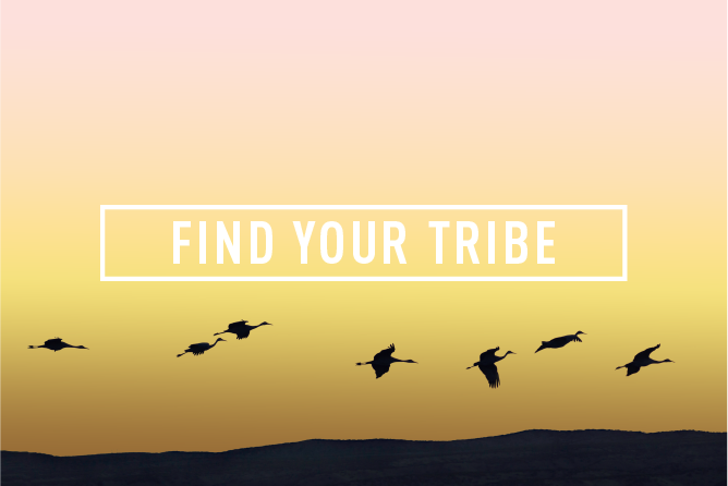 FIND YOUR TRIBE </BR> Monthly Event : Wed 28th Mar