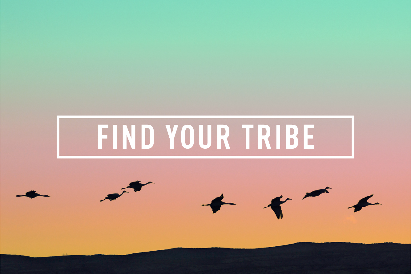 Find your Tribe </BR> MONTHLY GATHERING : THU 24TH AUG
