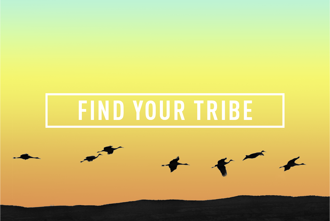 Find your Tribe </BR> MONTHLY EVENT : THU 28TH SEP