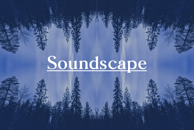 SOUNDSCAPE : Sonic Retreat<BR> BUNDANOON : 3rd - 5th Aug