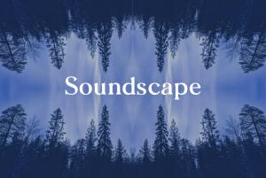 Soundscape: An Immersive Sonic Retreat