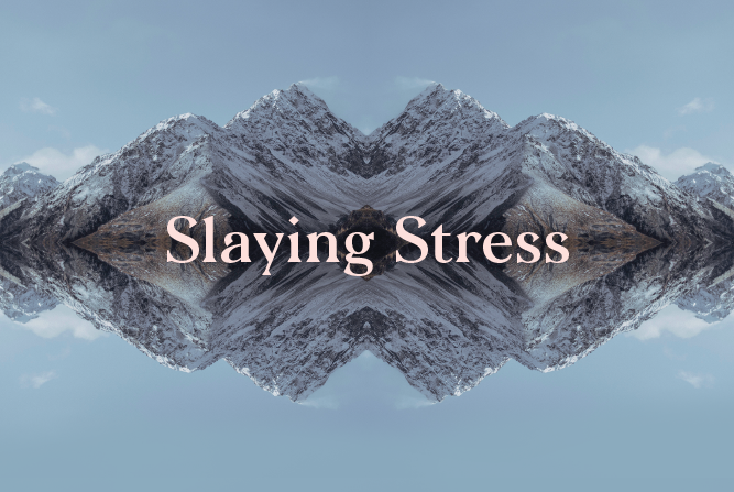 Slaying Stress </BR> 4 Week course : Starts 20th August