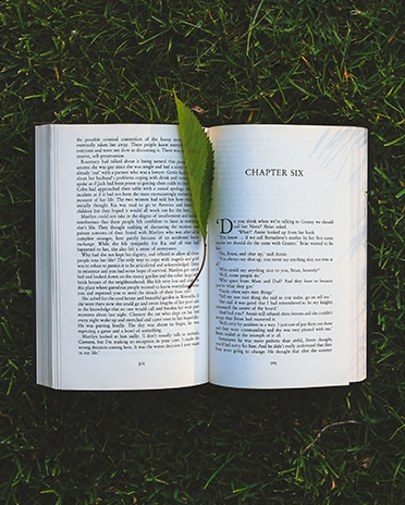 Book in park with leaf